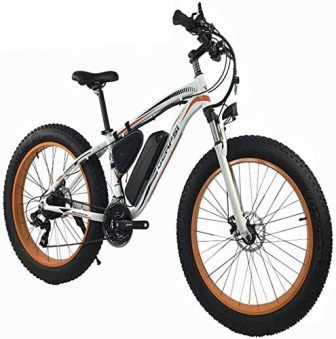 Wheel Men Snow Beach Mountain electric Bicycle